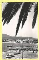 CPM 83 SAINTE MAXIME Le Port 1954 TBE - Sainte-Maxime