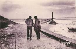 WA-15 - 241 :  ILE DE NOIRMOUTIER  A BEAUVOIR LE GOIS - Ile De Noirmoutier
