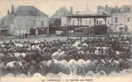 49 - Chemillé - Le Marché Aux Boeufs - Chemille