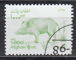 Afghanistan, 1998 - 1000af Sus Scrofa - Usato° - Afghanistan