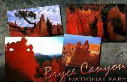 Divers     H112      3views , Bryce Canyon Ntional Park - Bryce Canyon