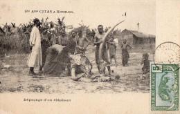Societe  CITAS   - Depecage D'un Elephant - Kinshasa - Léopoldville