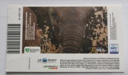 ITALIA 2013 - TICKET OF ENTRANCE ZOO OF ROME, USED - Tickets - Entradas