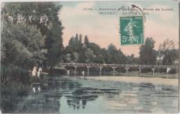 Environs D'Orléans   OLIVET    Le Pont Cotel - Orleans