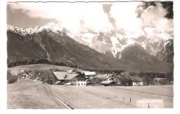 Österreich - Wald Bei Obsteig - Tirol - Österreich