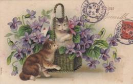 CP FANTAISIE BONJOUR DE DOUVILLE  DORDOGNE CAD 1908 - France