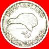 + KIWI BIRD: NEW ZEALAND ★ FLORIN 1950! LOW START ★ NO RESERVE! George VI (1937-1952) - Nouvelle-Zélande