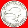 + KIWI BIRD: NEW ZEALAND ★ FLORIN 1951! LOW START! ★ NO RESERVE! George VI (1937-1952) - Nouvelle-Zélande