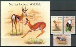 "2002 Sierra Leone ""Sierra Leone Wildlife"" Animali Animals Animaux Set + Block MNH** Sc87 - Sierra Leone (1961-...)"