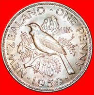+ DRESSED QUEEN: NEW ZEALAND ★ PENNY 1959! LOW START ★ NO RESERVE! - Nouvelle-Zélande