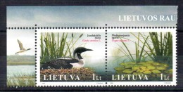 LITUANIE - LITHUANIA - BIRDS - OISEAUX - GAVIA ARCTICA - 2005 -