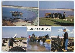 Goémoniers De Bretagne - Ramassage Du Goémon Et épandage Pour Le Séchage - écrite Et Timbrée - 2 Scans - Bretagne