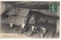 CPA (41) BOURRE - Cueillette Des Champignons... - France