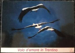 Volo D'amore In Trentino, Viaggiata 25/6/92 Francobolli Rari - Ohne Zuordnung