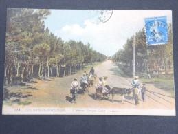 SABLES D ´OLONNE - Promenades Avec Anes En 1920 - A Voir - Lot P13327 - Sables D'Olonne
