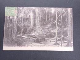MADAGASCAR - Sakaramy - Vue De La Rivière Aux Approvionements D'eau- 1908 - A Voir - Lot P13352 - Madagascar