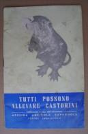 PCU/45 ALLEVARE CASTORINI Azienda Agricola Cavagnola - Fubine Anni ´50 - Animali Da Compagnia
