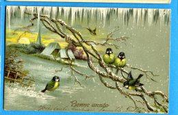 W137, Bonne Année, Mésanges, Bird, Oiseaux,précurseur, Relief, Circulée 1904 - New Year
