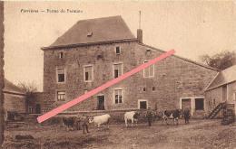 Ferrières - Ferme De Ferminne - Ferrieres