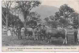 BOURG SAINT MAURICE - Le Marché - Spécimen De La Race Tarine - Vache - Bourg Saint Maurice