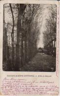 """1905  Vellereille Les Bayeux """" Seminaire De Bonne Espérance """" Allée Du Bosquet  ( Thuin ) - Estinnes"""