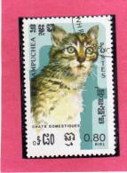 KAMPUCHEA - CAMBOGIA CAMBODIA 1985 FAUNA CATS ANIMAL CAT ANIMAL ANIMALI GATTI ANIMALE GATTO USATO USED - Kampuchea