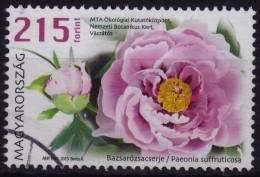 FLOWER (Paeonia suffruticosa) peony - USED - Hungary 2015