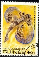 Fish, Flying Gurnard (Cephalacanthus Volitans), Guinea Stamp SC#802 Used - Guinée (1958-...)