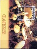 BF n�177 -oblit�r� - Champignons - CAMBODGE
