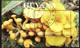 BF non r�pertori�   -oblit�r� - Champignons - GUYANA