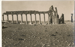 Real Photo Palmyre  Photo Luigi Stironi Damas - Syrie