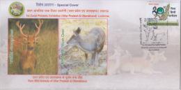 India  2015  Swamp Deer  And  Musk Deer  Special Cover   # 87810  Inde Indien - Game