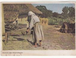 AK Ukraine, Landwirtschaft, Ukrainerin Beim Häckselschneiden, Ca. 1942 - Ukraine