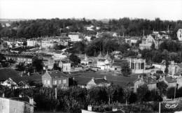 Cpsm MERU, Vue Panoramique    (39.13) - Meru