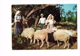Grèce - FOLKLORE , PERSONNAGES , Paysans De Corfou , Moutons Chèvre - Griekenland