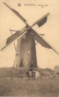 BAARLE-HERTOG: Molen H. Loots - Baarle-Hertog