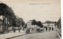 CPA - SEMBLANCAY (37) - Aspect De La Place De La Mairie En 1910 - Tricycle Aves Remorque - Semblançay