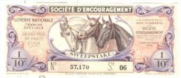 Billet Loterie - Sweepstake - Grand Prix De Paris 1938  - Soc. D'Encouragement Des Races De Chevaux En France - Billets De Loterie