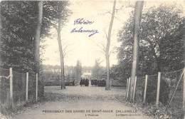 Pensionnat Des Dames De St-Maur, Château De Callenelle - L´Avenue          ( 2 Scans ) - Peruwelz