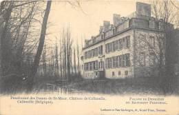 Pensionnat Des Dames De St-Maur, Château De Callenelle           ( 2 Scans ) - Peruwelz