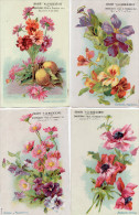 """LOT 9 Cartes Publicitaires - Chirorée """"A LA MAGICIENNE"""" - Fleurs - Illustrateur - Flores"""