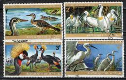 SENEGAL - 1974 - PARCO ACQUATICO NAZIONALE DI DJOUDJ - UCCELLI - USATI - Senegal (1960-...)