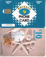 BAHAMAS ISL.(chip) - Sea Shells(BAH C22b), Medium Number In Box, Chip GEM6b, Used - Bahamas