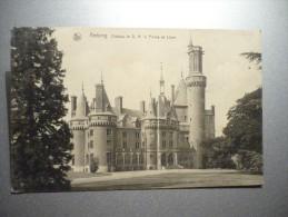 Chateau De S.A. Le Prince De Ligne - Antoing