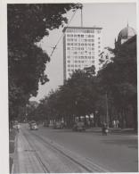 AK - Wien Ringstrasse Mit Gegenverkehr - 1955 - Sonstige