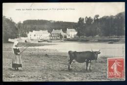 Cpa Du 29 La Forêt Fouesnant -- Vue Générale De L' Anse     NOV15 14 - La Forêt-Fouesnant
