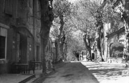 511Cc  84 Beaumont De Pertuis Fontaine Du Cours Terrasse Du Café - France