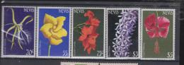 Nevis YV ? N ? Fleur - Végétaux