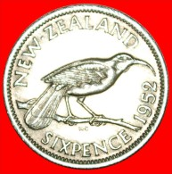 + BIRD: NEW ZEALAND★ 6 PENCE 1952! UNCOMMON IN THIS CONDITION! LOW START ★ NO RESERVE!  George VI (1937 - Nouvelle-Zélande