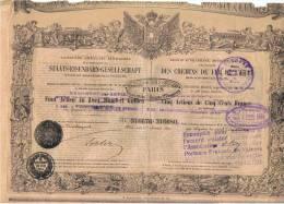 RARE :STE AUTRICHIENNE, IMPERIALE,ROYALE DES CHEMINS DE FER DE L´ETAT  (1863) - Ferrovie & Tranvie